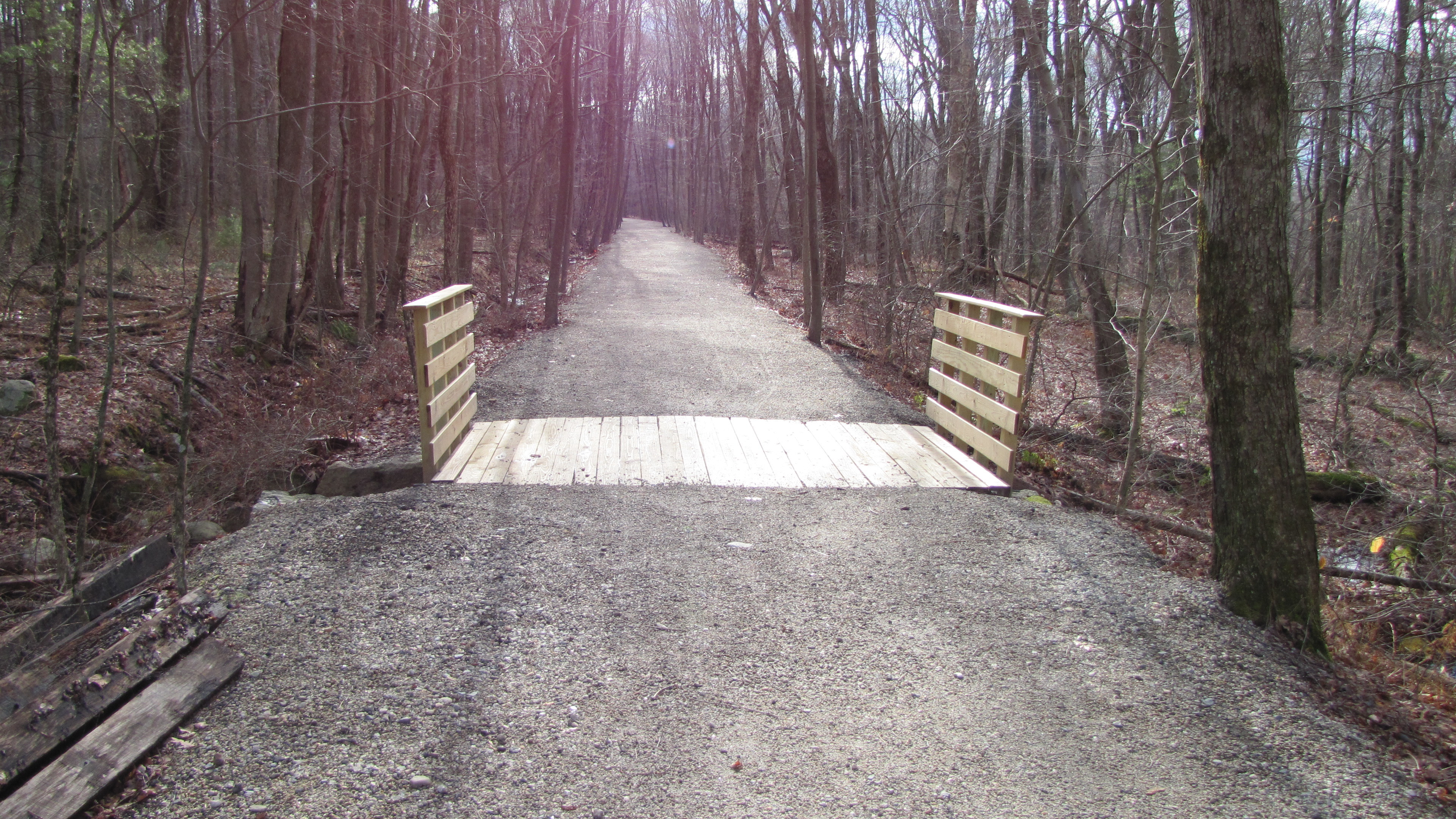 Culvert Bridge on Center Trail