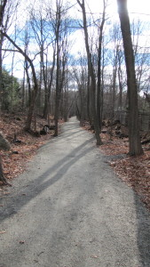 The Center Trail