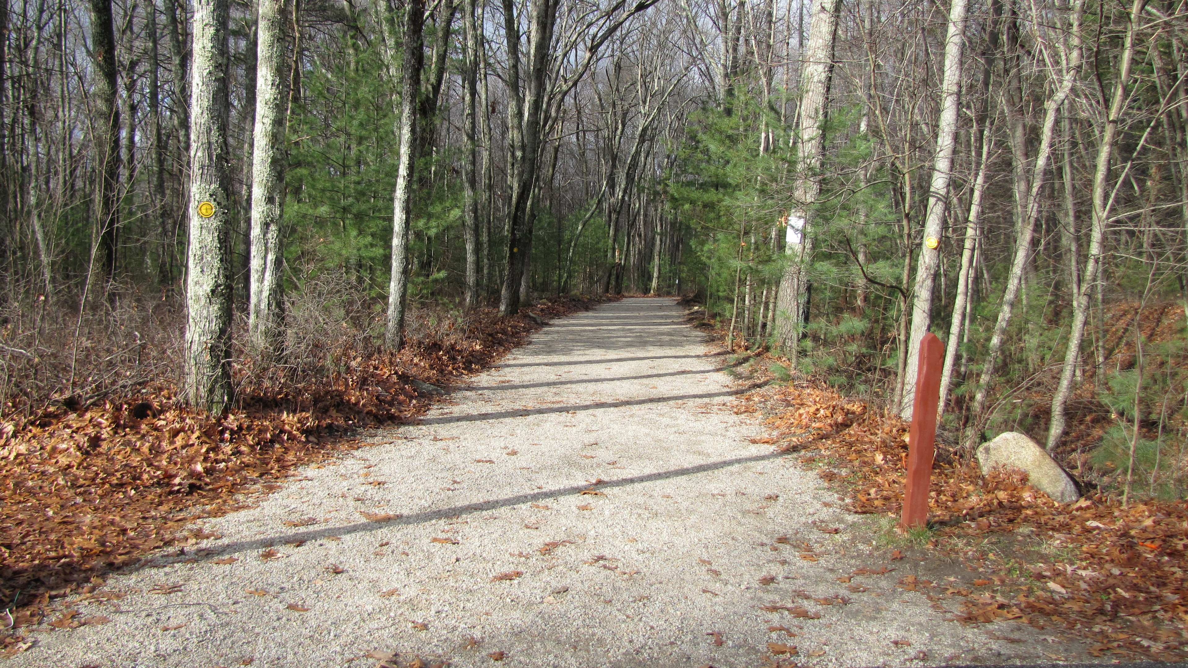 Center Trail near Loop Road