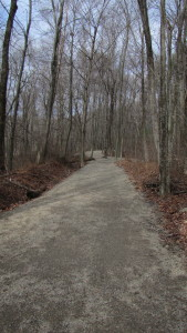A View of the Center Trail Looking North